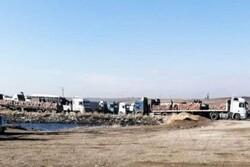 نظامیان اشغالگر آمریکایی محصولات کشاورزی سوریه را سرقت می کنند