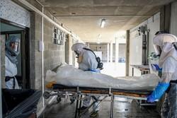شمار قربانیان کووید -۱۹ در اراضی اشغالی از مرز ۴ هزار تن گذشت