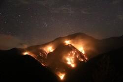 ۱۵ هکتار از جنگل های ماسوله طعمه حریق شد