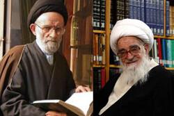 تجلیل آیتالله صافی از فعالیت قرآنی دکتر حجتی منشا تحول خواهدبود