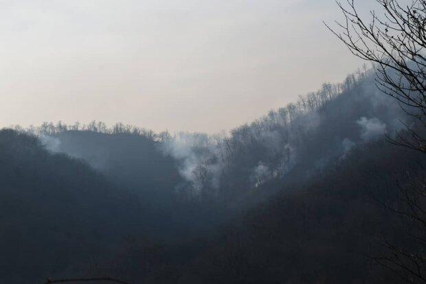 آتش سوزی جنگلی در رامسر مهار شد