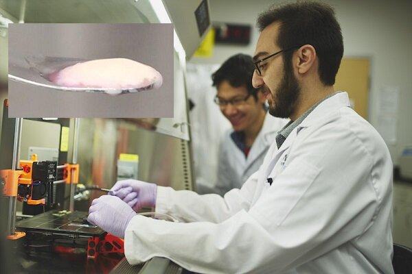 موسسات و سرآمدان علمی برتر معرفی شدند