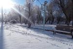 روی خوش بهمن ماه به مردم دلفان/ بارش برف شهر را سپیدپوش کرد