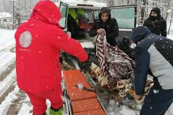 امدادرسانی به ۴۹۰۰ هموطن گرفتار در برف و کولاک