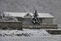 İran'da yoğun kar yağışı etkili oldu