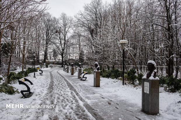 Winter snow whitens Rasht