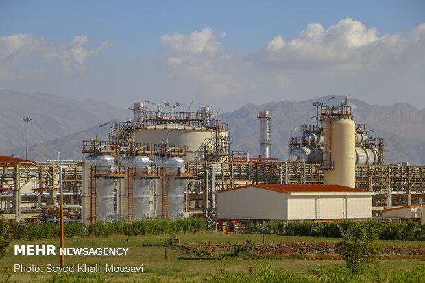 تولید گاز سنتز پتروشیمی در کل چرخه به نقطه صد درصدی رسید