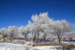 Kuzey Horasan eyaletinin karlı doğasından fotoğraflar
