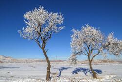 بارش ۵۰ سانتی متری برف در گلستان/دمای هوا افزایش می یابد