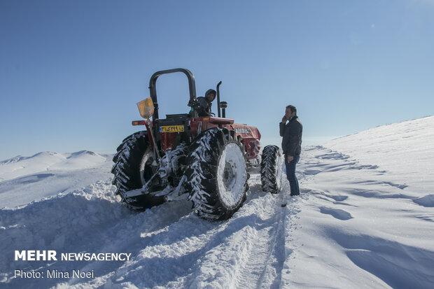 مردان جاده های برفی