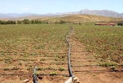 «آب» مقولهای حیاتی برای لرستان/ تنها ۱۸۵ هزار هکتار اراضی آبی داریم