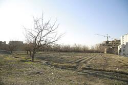 دژ باغ ویژه مادران و کودکان در منطقه ۵ احداث میشود