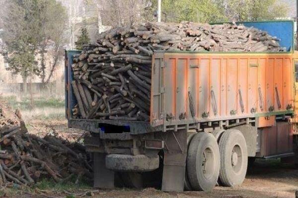 ۵ تن چوب قاچاق در سلسله کشف شد