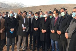 افزایش ۸۷ هزار تنی محصولات کشاورزی در دیم زارهای کردستان