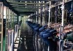 راهاندازی هزار و ۱۶۰ واحد صنعتی جدید در کشور