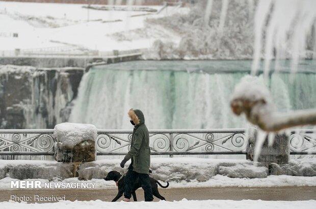Aşırı soğuktan donan Niagara Şelalesi'nden fotoğraflar