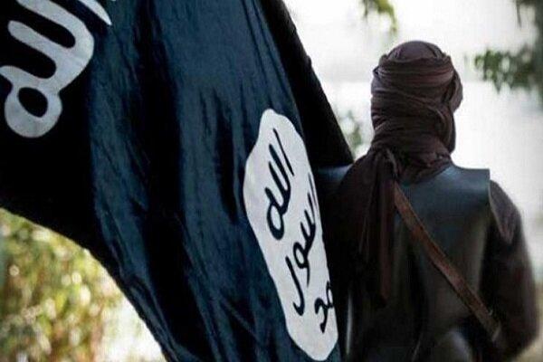 Hashd al-Sha'abi arrests an ISIL leader in N Iraq