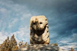 Shir Sangi, Median stone lion, in Hamedan