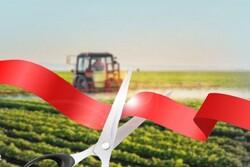 ۶ طرح تولیدی و عمرانی کشاورزی در نقده به بهره برداری می رسد