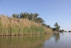 Let's just say 'RAMSAR' wetlands convention