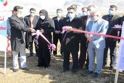 ۵ طرح کشاورزی در شاهیندژ افتتاح شد