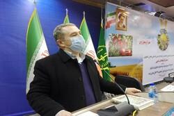 سهم ۳۸ درصدی بخش کشاورزی در ایجاد اشتغال آذربایجان غربی