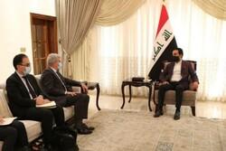 فرانسه از پیشرفت و ثبات عراق حمایت می کند