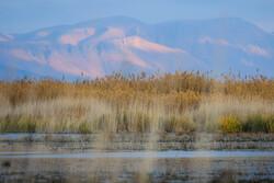 İran'daki Mighan göletinden kartpostallık manzaralar