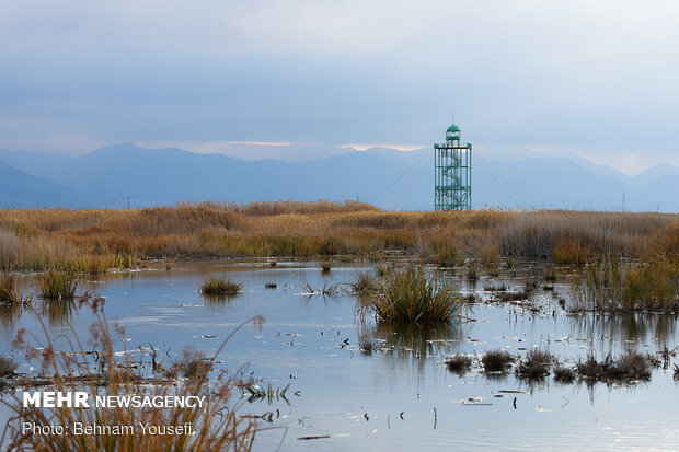 Breathtaking scenery of Meighan Wetland in central Iran