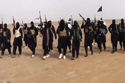 Iraq PMU forces arrest a senior ISIL member in Mosul