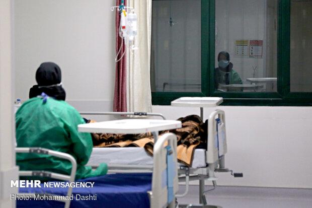 ۱۰۵ مبتلا به کرونا در بیمارستانهای هرمزگان بستری هستند
