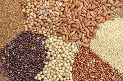 ۴ مسئولیت تنظیم بازار به وزارت جهاد کشاورزی بازگشت