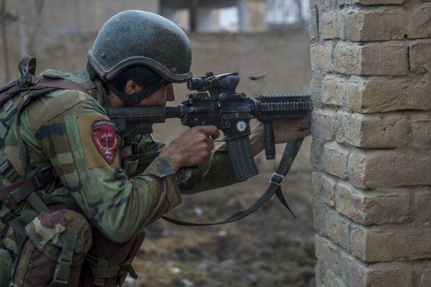 153 Taliban members killed in past 24h: Afghan MoD