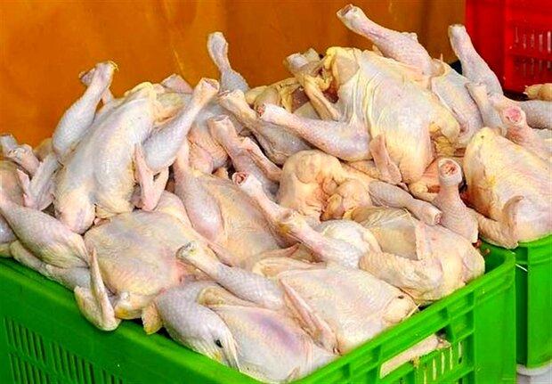 دولت با افزایش قیمت مصوب مرغ موافقت نکرد