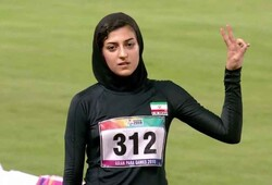 Hajar Safarzadeh