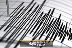 VIDEO: 7.1 magnitude quake in Japan's Fukushima