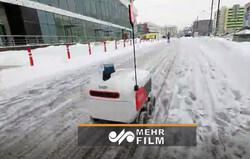 ایده جالب برای مشاغل در روزهای برفی