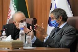 تہران میں علی اکبر صالحی اور بین الاقوامی ایٹمی ایجنسی کے ڈائریکٹر کے درمیان مذاکرات