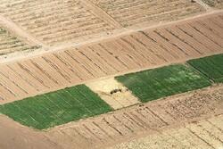 تغییرات اقلیمی ۸۰۰ میلیارد تومان به کشاورزی اصفهان خسارت زد