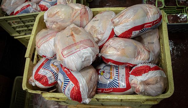نگرانی از بابت تأمین گوشت مرغ مورد نیاز مردم اهر وجود ندارد