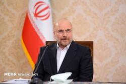 Iran to halt implementing AP as of Feb. 23