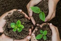 برگزاری ویژه برنامه «هر شهید یک درخت» در شرق پایتخت