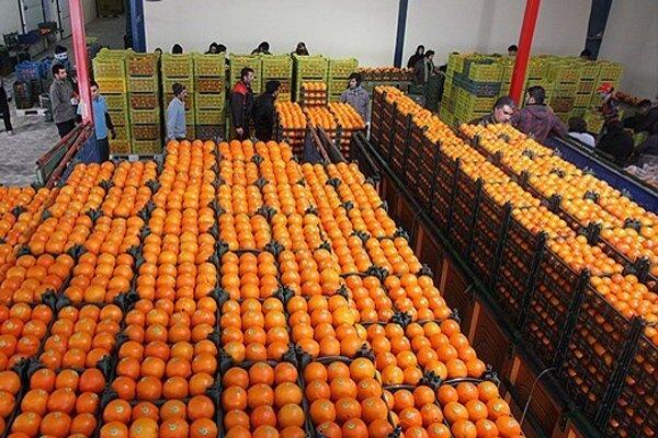 میوه عید در ۳۰ مرکز در شهر کرمان توزیع می شود