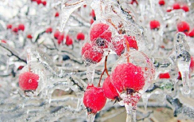 احتمال سرمازدگی محصولات کشاورزی و گلخانهای/ خطر لغزندگی محورها