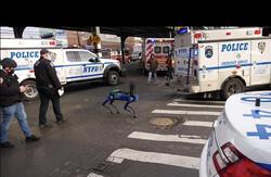 سگ رباتیک به گزارش پلیس رسیدگی می کند