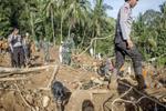 رانش زمین در اندونزی/ ۵ تن کشته و ۷۰ تن ناپدید شدند