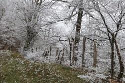 احتمال بارش برف و کاهش محسوس دما در خراسان شمالی وجود دارد