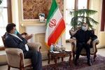 US not want good for Afghanistan: Amir-Abdollahian