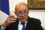 French FM holds talk with IAEA chief about Iran nuclear deal