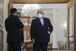 FM Zarif warns of West's 'wrong' move in IAEA BG